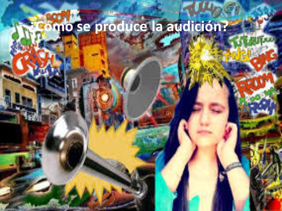 ¿Cómo se produce la audición