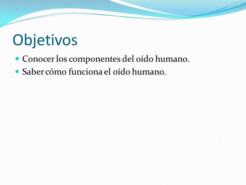 Objetivos Conocer los componentes del oído humano.