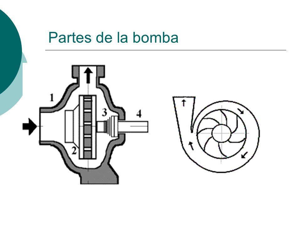Partes de la bomba