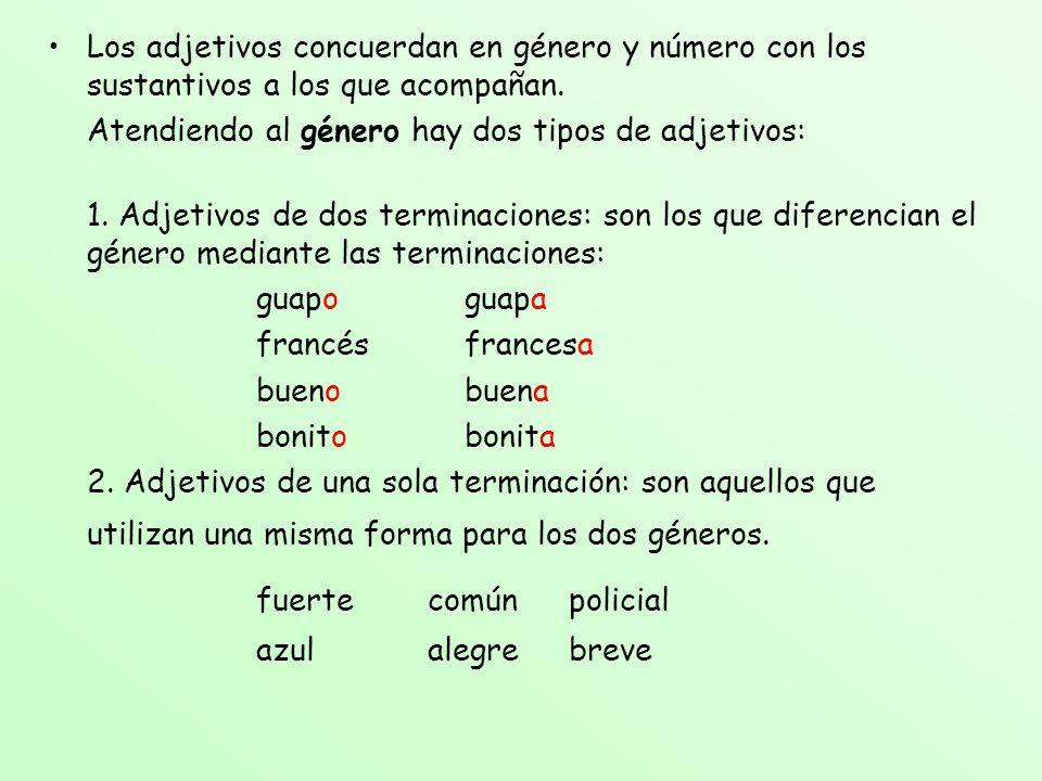 Los adjetivos concuerdan en género y número con los sustantivos a los que acompañan.