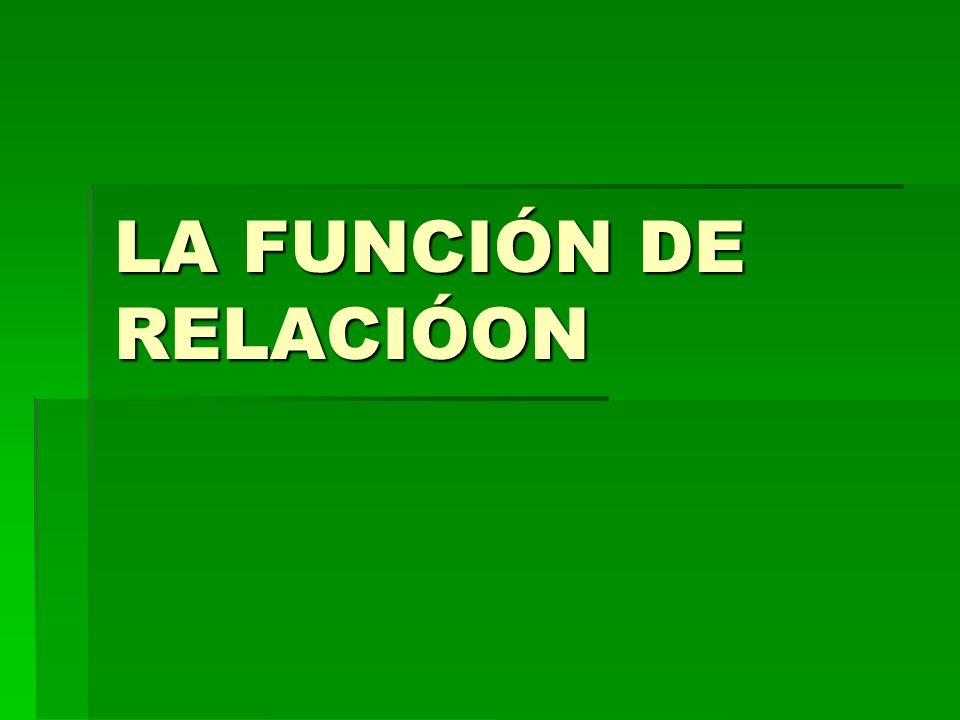 LA FUNCIÓN DE RELACIÓON