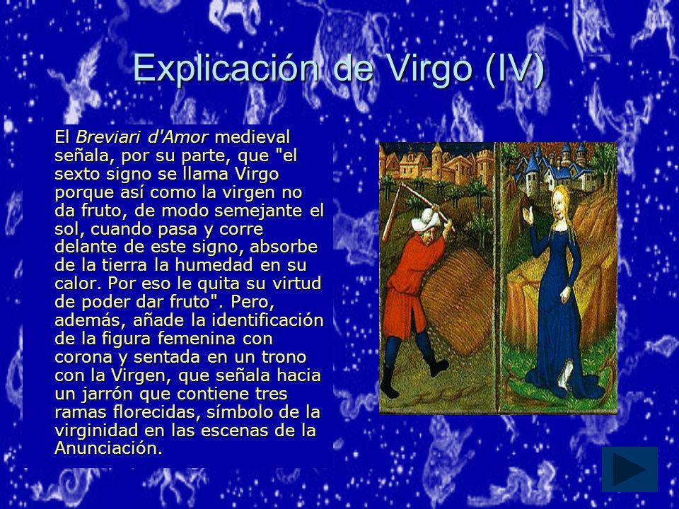 Explicación de Virgo (IV)