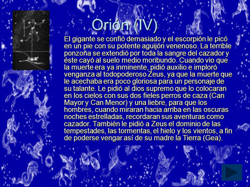 Orión (IV)