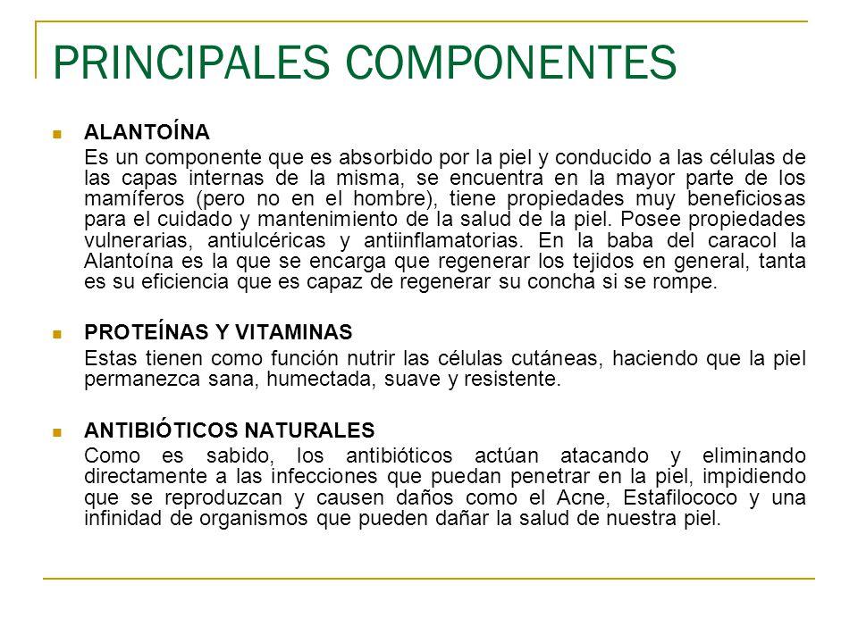 PRINCIPALES COMPONENTES