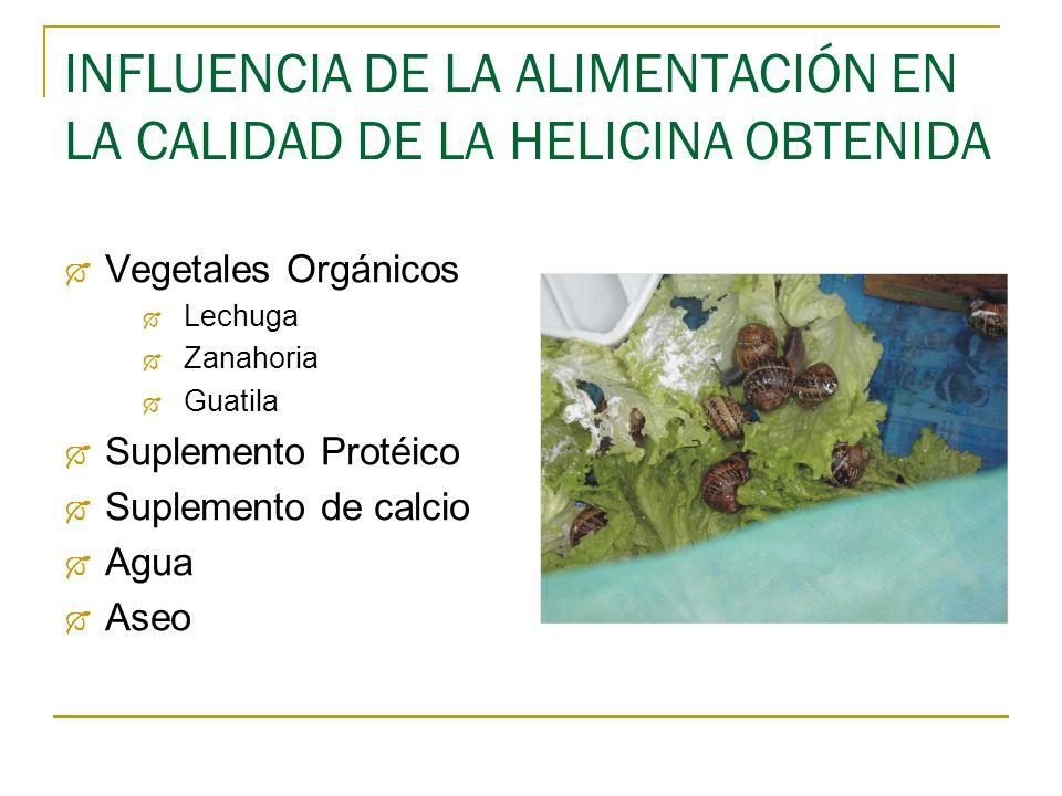 INFLUENCIA DE LA ALIMENTACIÓN EN LA CALIDAD DE LA HELICINA OBTENIDA
