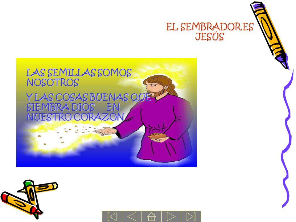 EL SEMBRADOR ES JESÚS LAS SEMILLAS SOMOS NOSOTROS.