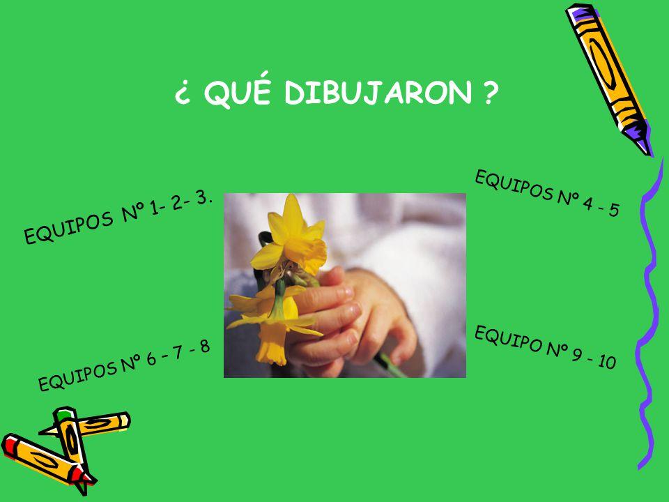 ¿ QUÉ DIBUJARON EQUIPOS Nº 1- 2- 3. EQUIPOS Nº 4 - 5