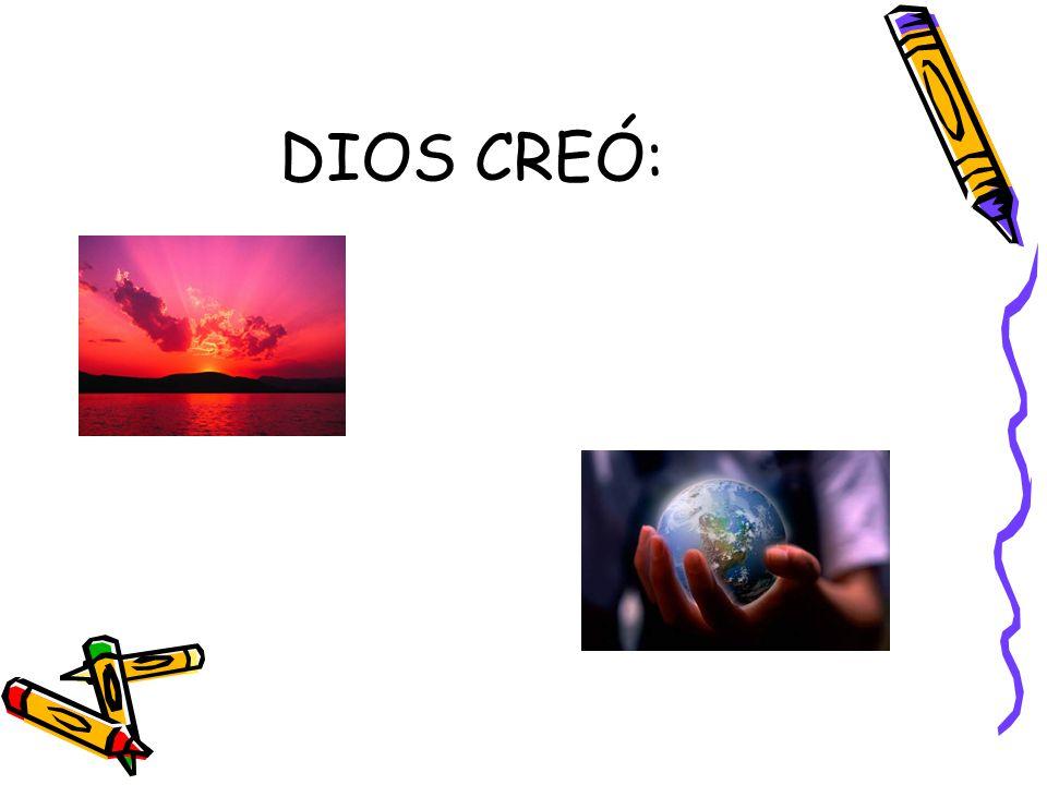 DIOS CREÓ: