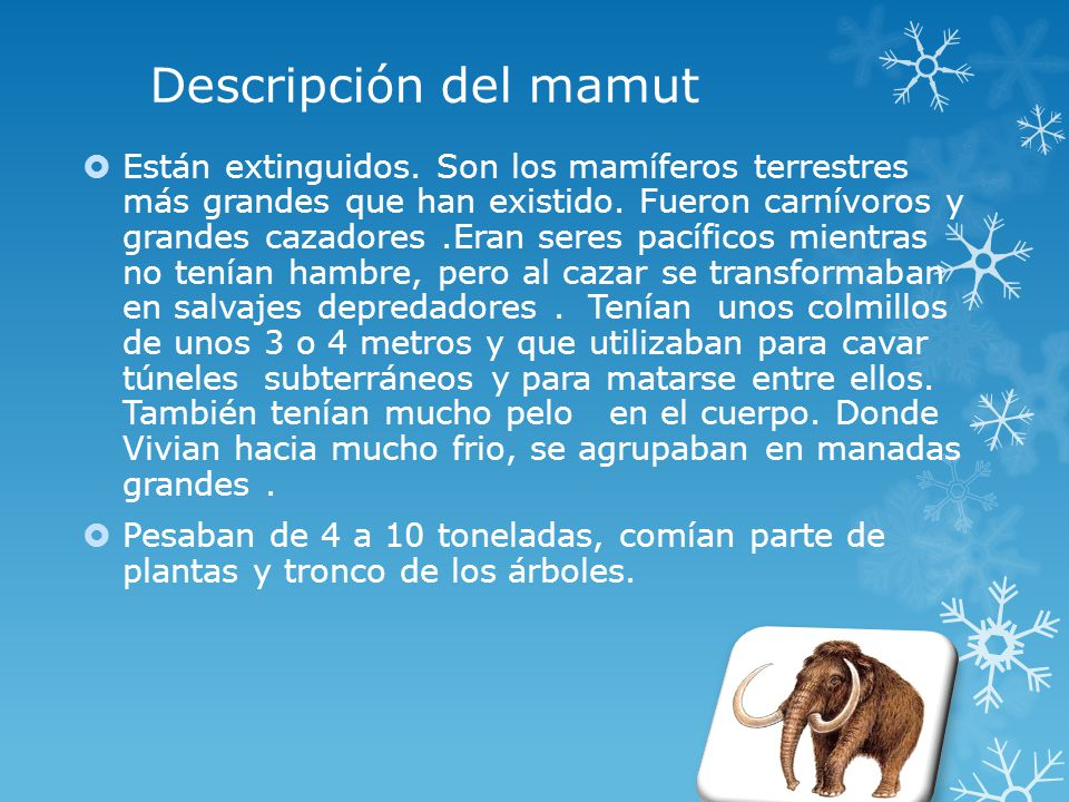 Descripción del mamut