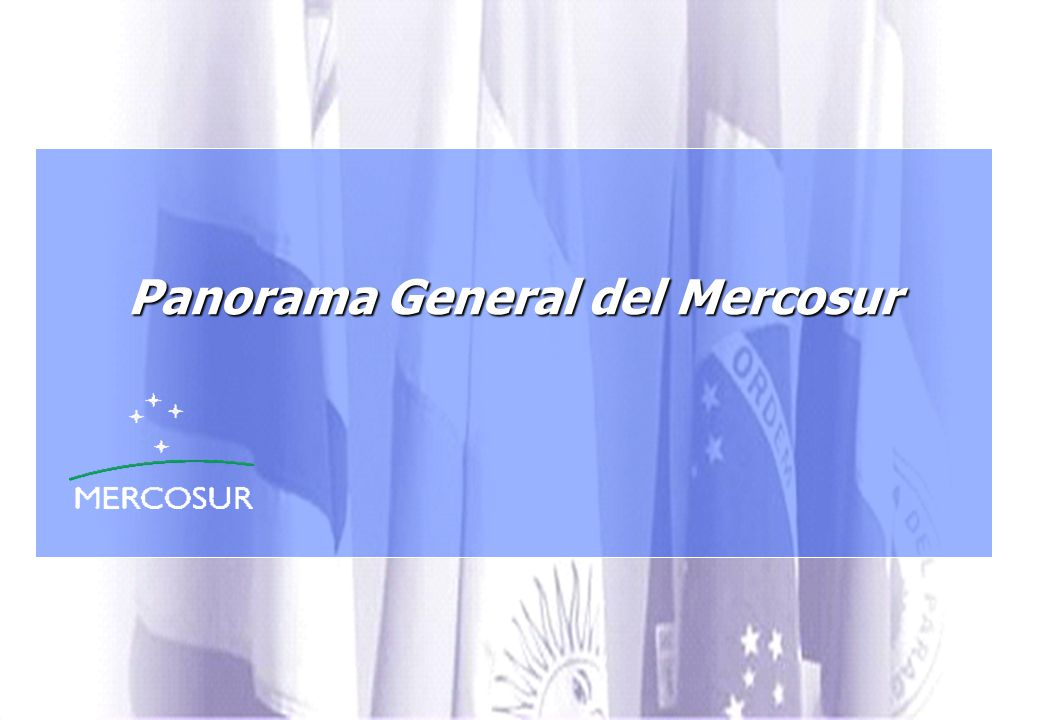 Panorama General del Mercosur