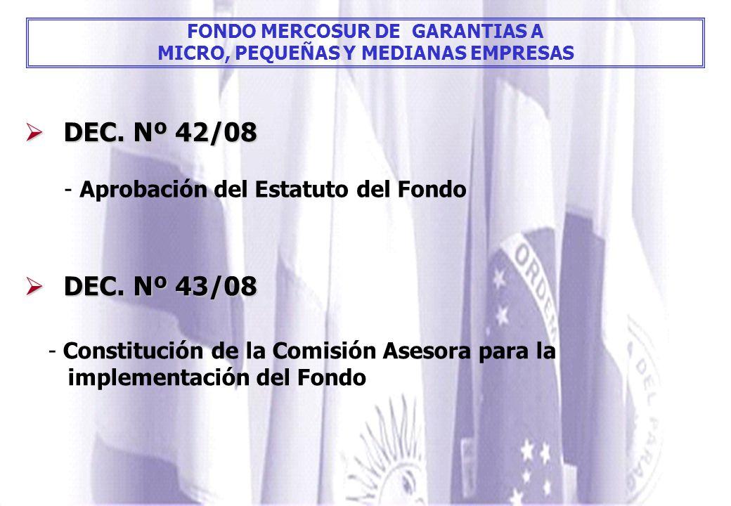 FONDO MERCOSUR DE GARANTIAS A MICRO, PEQUEÑAS Y MEDIANAS EMPRESAS