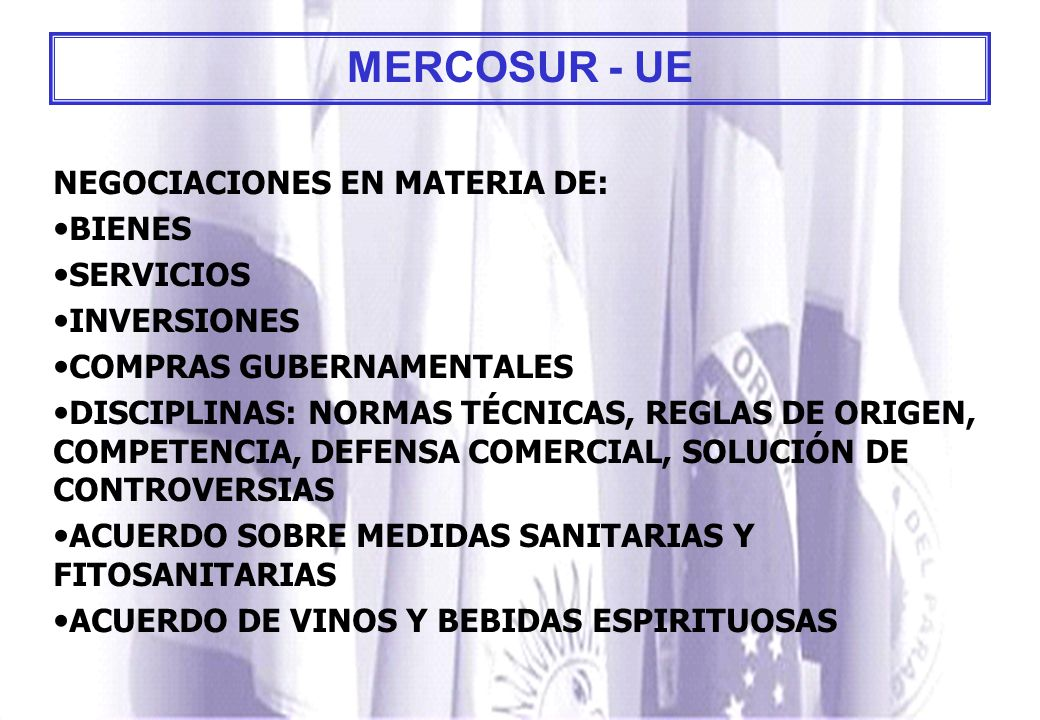 MERCOSUR - UE NEGOCIACIONES EN MATERIA DE: BIENES SERVICIOS