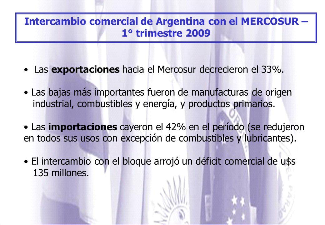 Intercambio comercial de Argentina con el MERCOSUR – 1° trimestre 2009