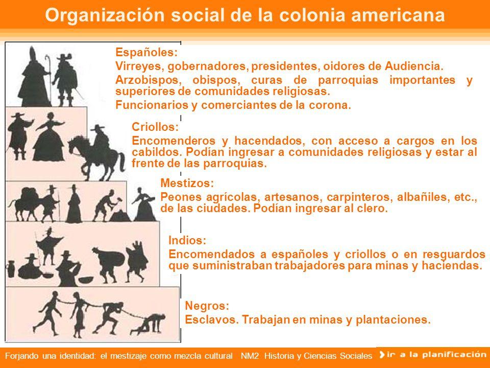 Organización social de la colonia americana
