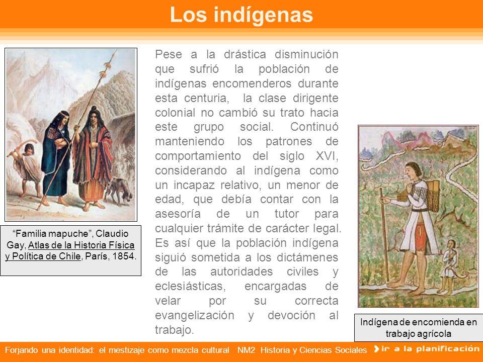 Indígena de encomienda en trabajo agrícola
