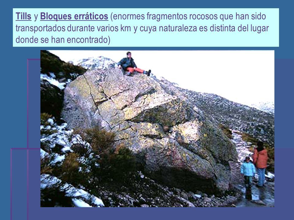 Tills y Bloques erráticos (enormes fragmentos rocosos que han sido transportados durante varios km y cuya naturaleza es distinta del lugar donde se han encontrado)