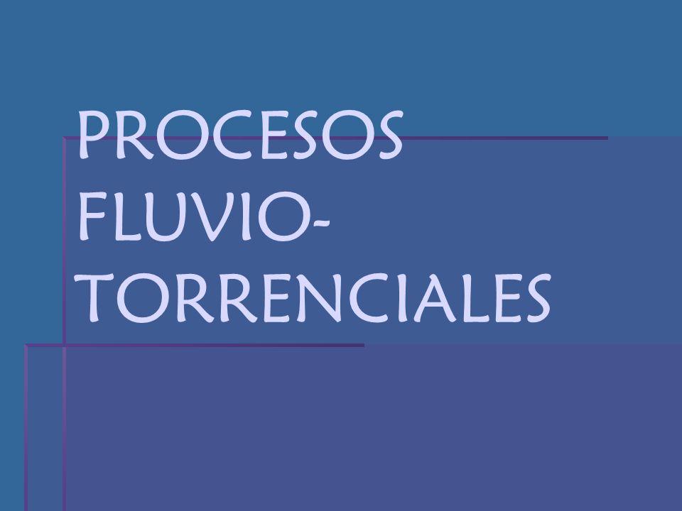 PROCESOS FLUVIO-TORRENCIALES