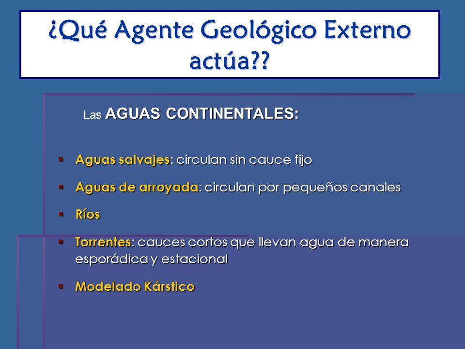 ¿Qué Agente Geológico Externo actúa