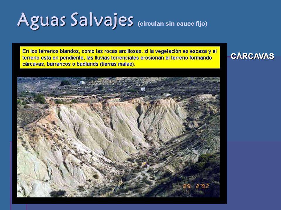 Aguas Salvajes (circulan sin cauce fijo)