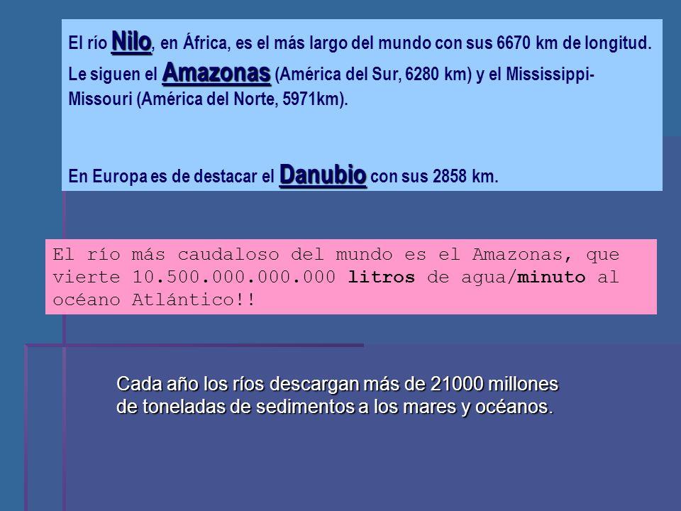 El río Nilo, en África, es el más largo del mundo con sus 6670 km de longitud. Le siguen el Amazonas (América del Sur, 6280 km) y el Mississippi- Missouri (América del Norte, 5971km).