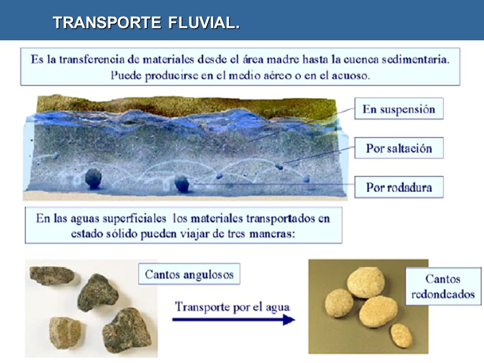 TRANSPORTE FLUVIAL.
