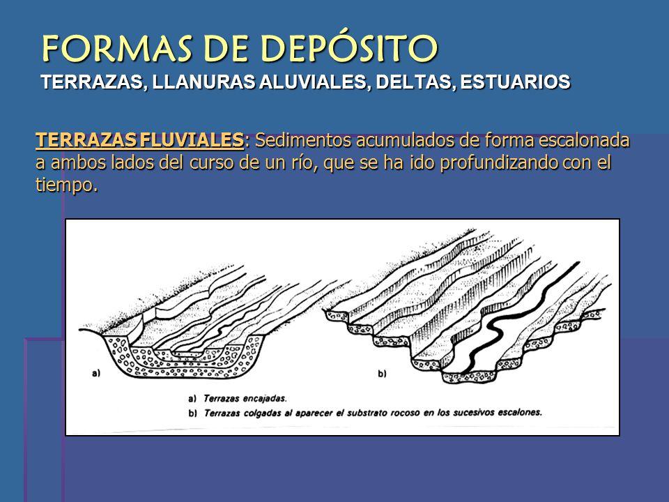 FORMAS DE DEPÓSITO TERRAZAS, LLANURAS ALUVIALES, DELTAS, ESTUARIOS