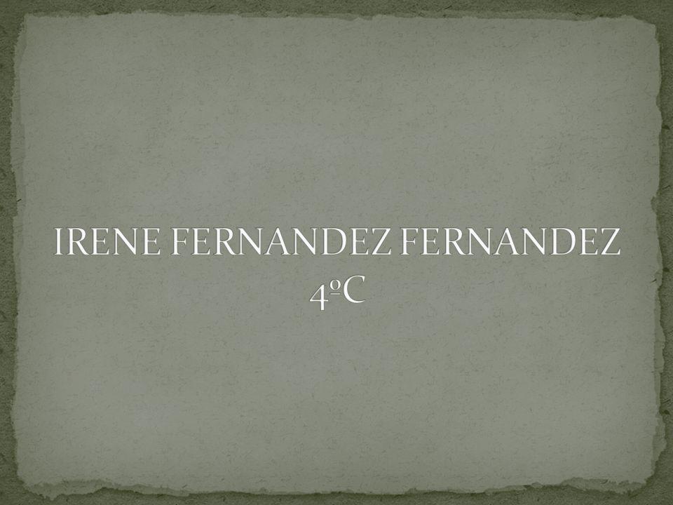 IRENE FERNANDEZ FERNANDEZ 4ºC