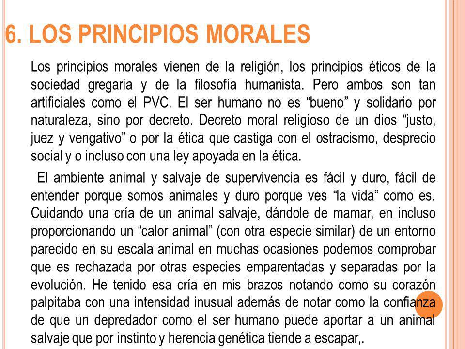 6. LOS PRINCIPIOS MORALES