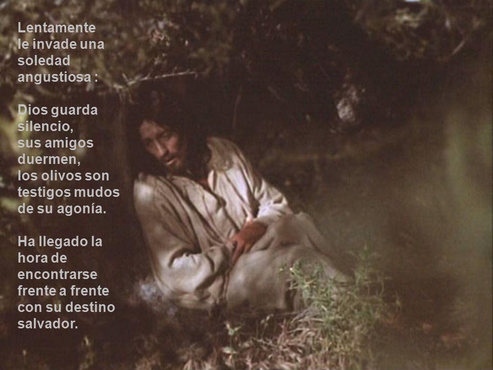 Lentamente le invade una soledad angustiosa : Dios guarda silencio, sus amigos duermen, los olivos son testigos mudos de su agonía.