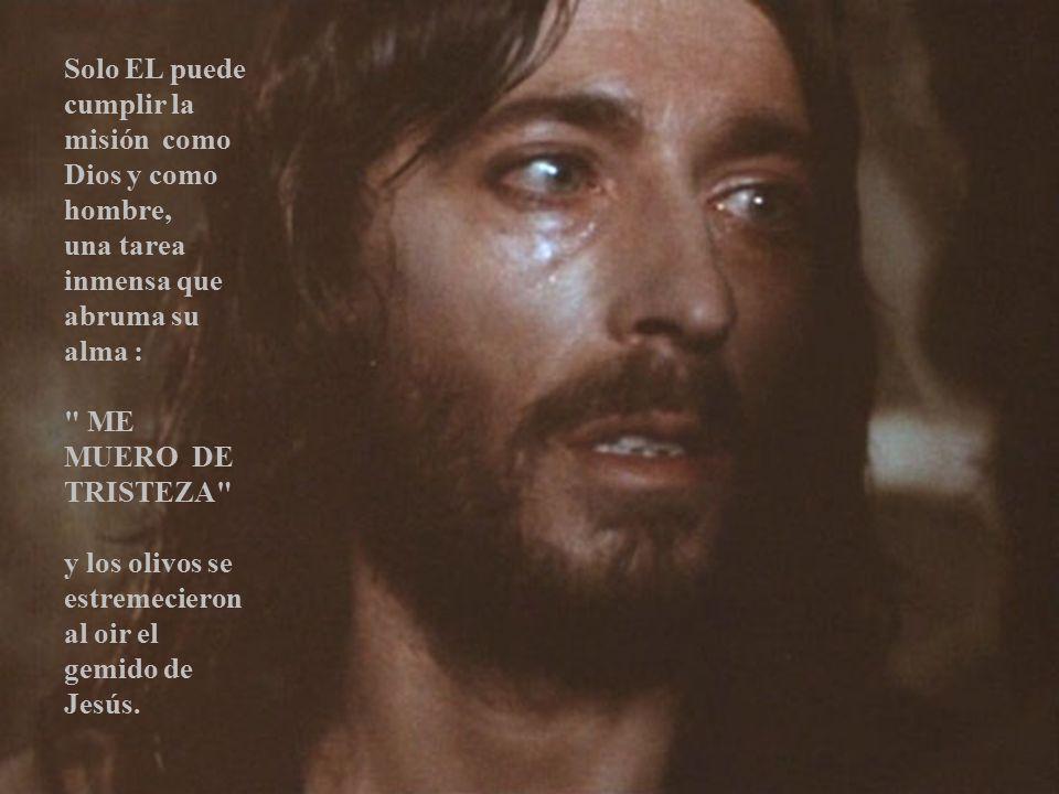 Solo EL puede cumplir la misión como Dios y como hombre,