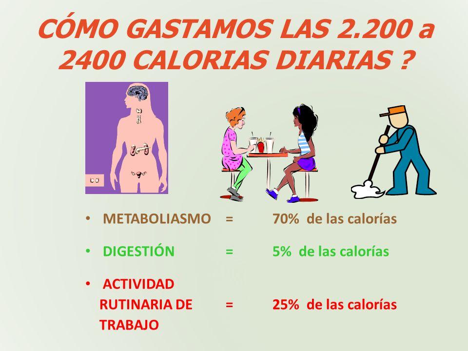 CÓMO GASTAMOS LAS 2.200 a 2400 CALORIAS DIARIAS