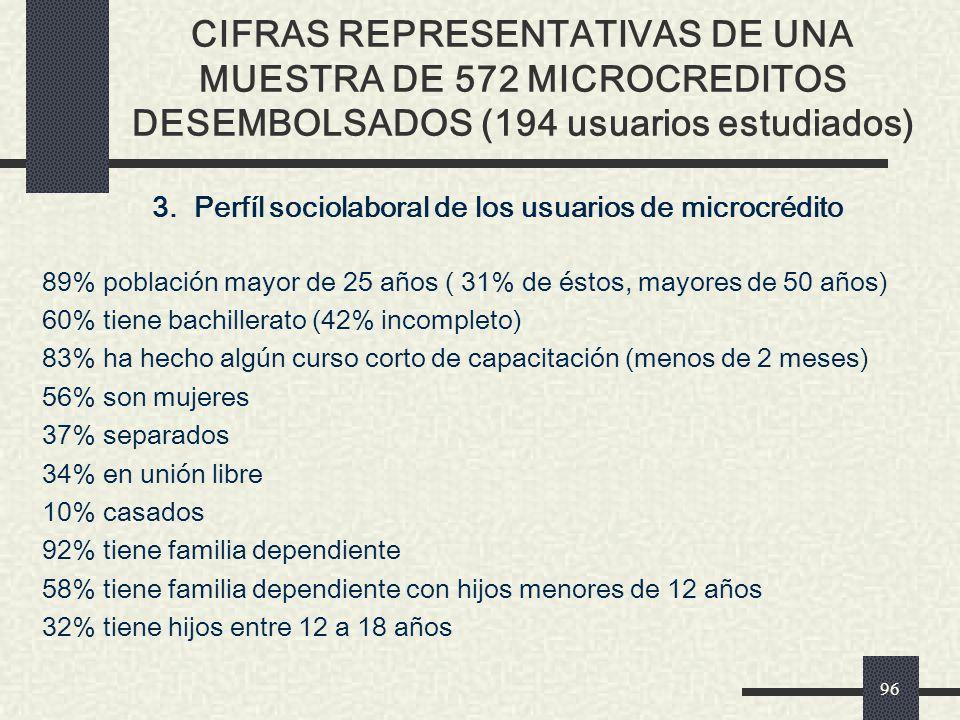3. Perfíl sociolaboral de los usuarios de microcrédito