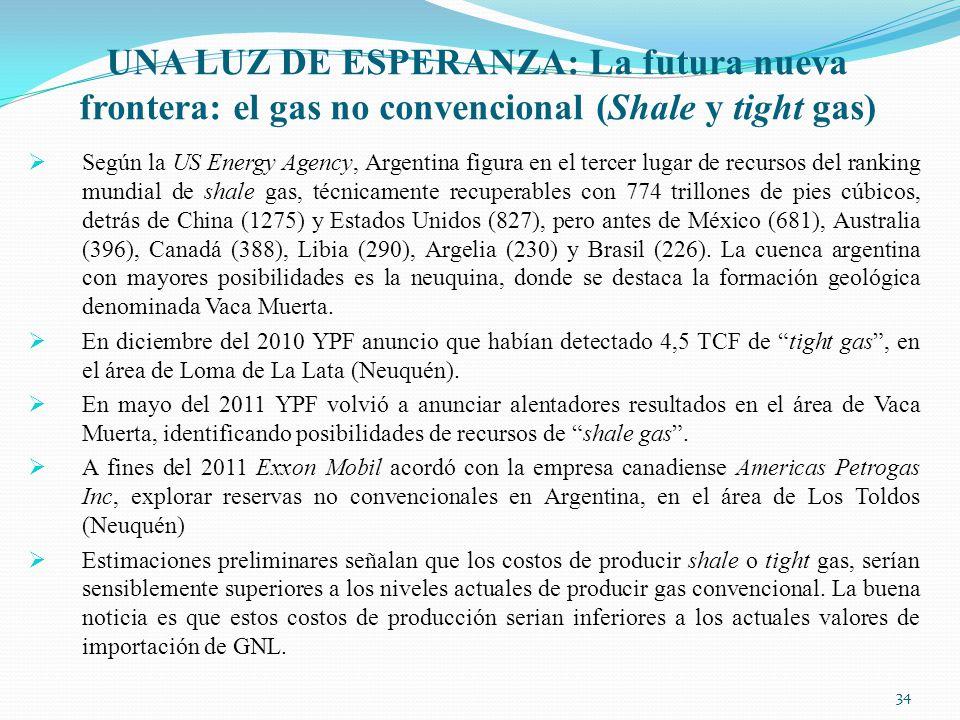 UNA LUZ DE ESPERANZA: La futura nueva frontera: el gas no convencional (Shale y tight gas)