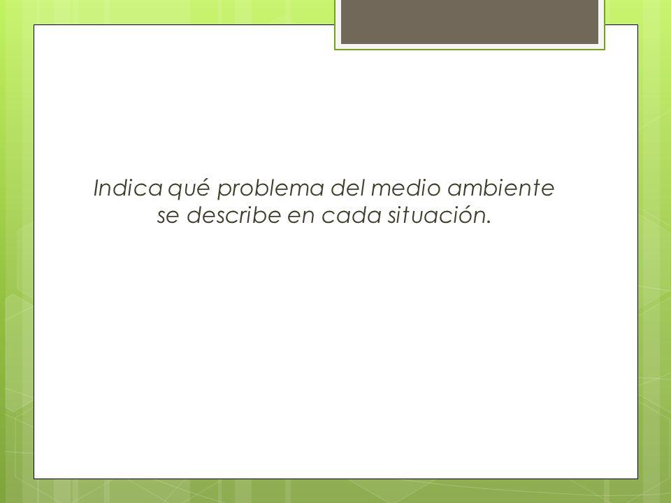 Indica qué problema del medio ambiente se describe en cada situación.
