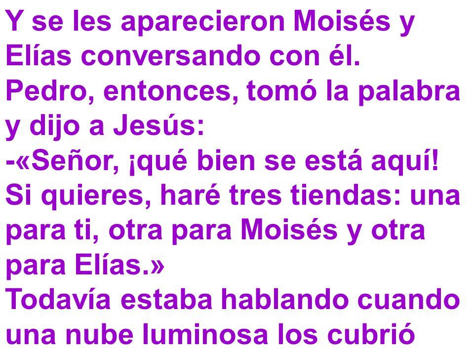 Y se les aparecieron Moisés y Elías conversando con él