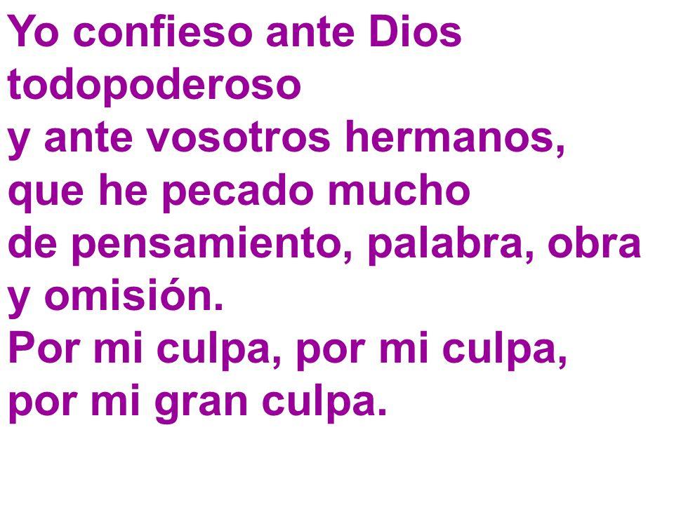 Yo confieso ante Dios todopoderoso y ante vosotros hermanos,
