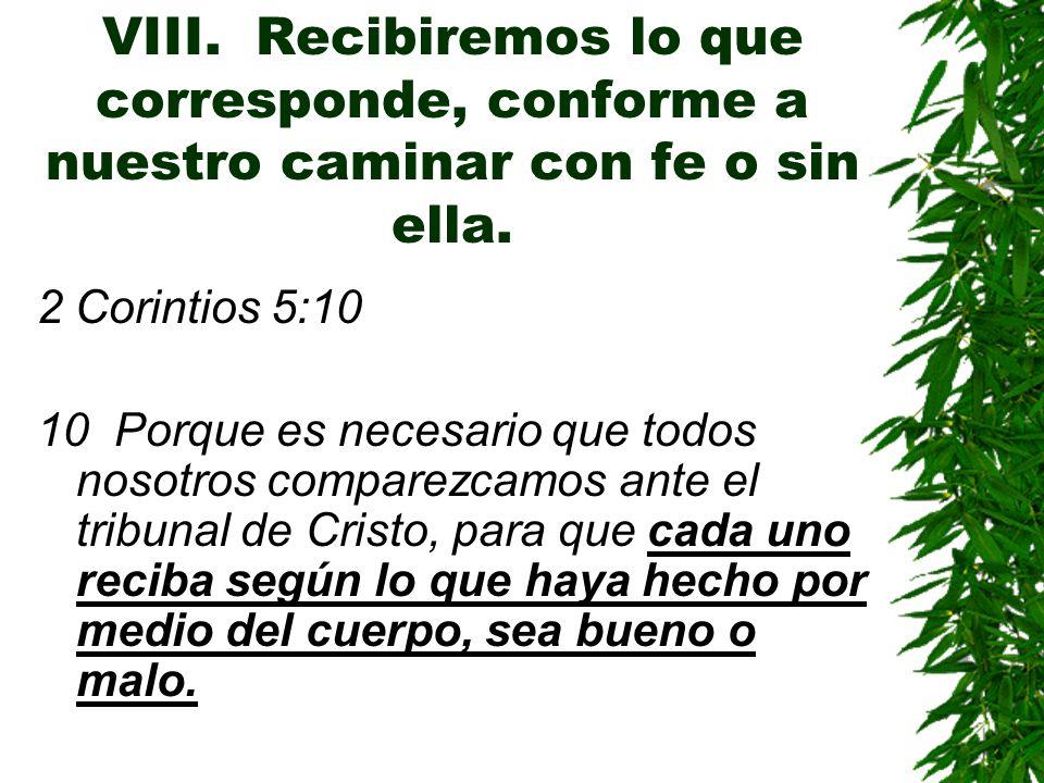 VIII. Recibiremos lo que corresponde, conforme a nuestro caminar con fe o sin ella.