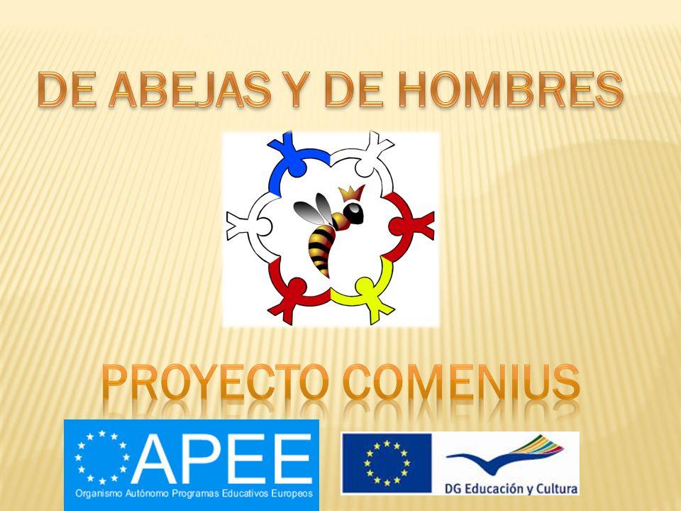 DE ABEJAS Y DE HOMBRES PROYECTO COMENIUS