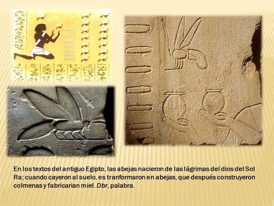 En los textos del antiguo Egipto, las abejas nacieron de las lágrimas del dios del Sol Ra; cuando cayeron al suelo, es tranformaron en abejas, que después construyeron colmenas y fabricarian miel.