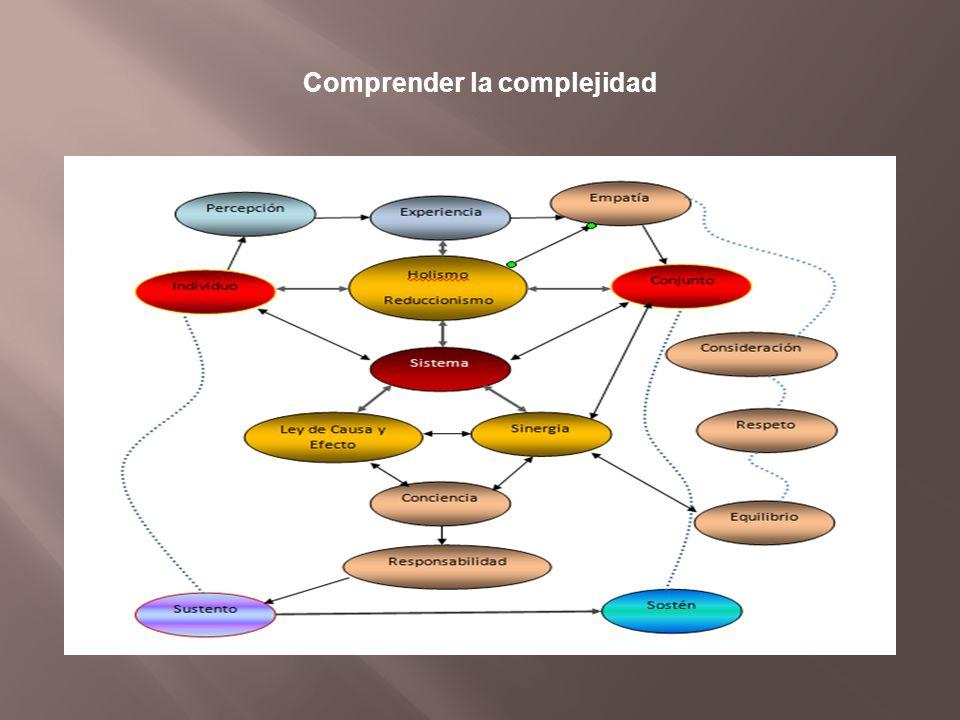 Comprender la complejidad