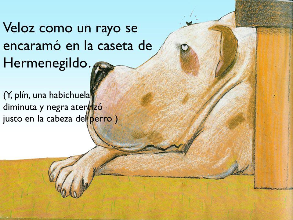 Veloz como un rayo se encaramó en la caseta de Hermenegildo… (Y, plín, una habichuela diminuta y negra aterrizó justo en la cabeza del perro )