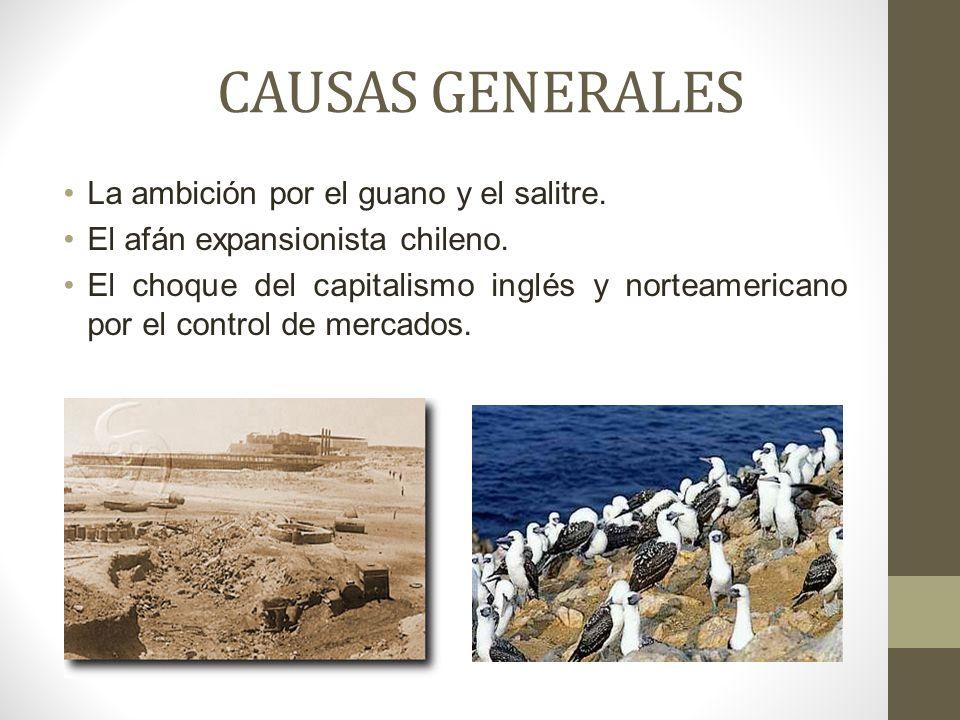 CAUSAS GENERALES La ambición por el guano y el salitre.
