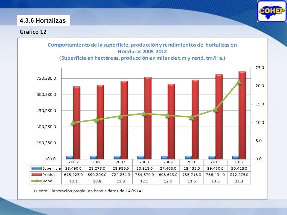 4.3.6 Hortalizas Grafico 12