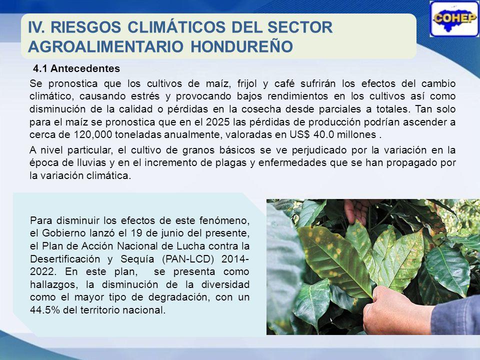 IV. RIESGOS CLIMÁTICOS DEL SECTOR AGROALIMENTARIO HONDUREÑO