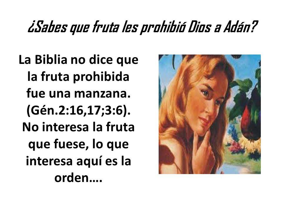 ¿Sabes que fruta les prohibió Dios a Adán