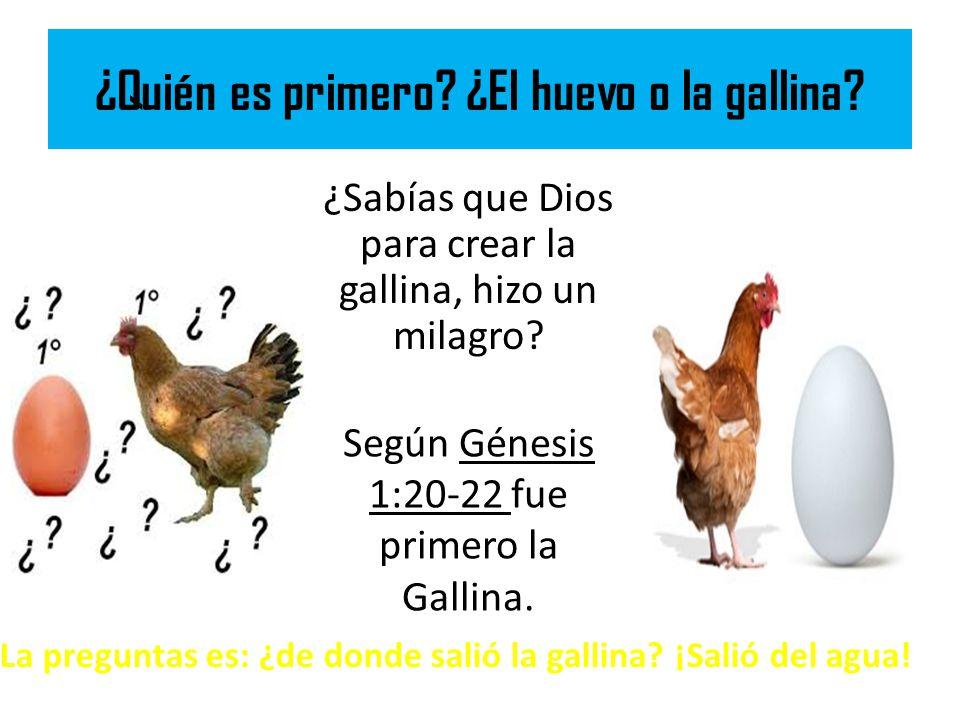 ¿Quién es primero ¿El huevo o la gallina