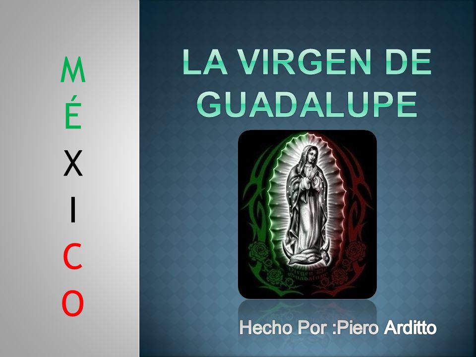 La Virgen De Guadalupe M É X I C O Hecho Por :Piero Arditto