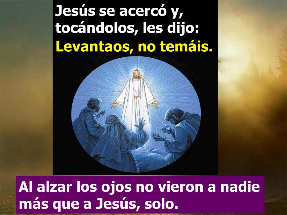 Jesús se acercó y, tocándolos, les dijo: