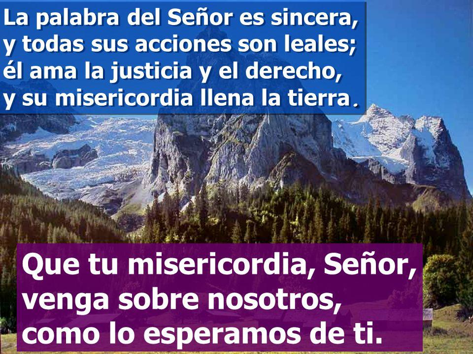 La palabra del Señor es sincera, y todas sus acciones son leales; él ama la justicia y el derecho, y su misericordia llena la tierra.