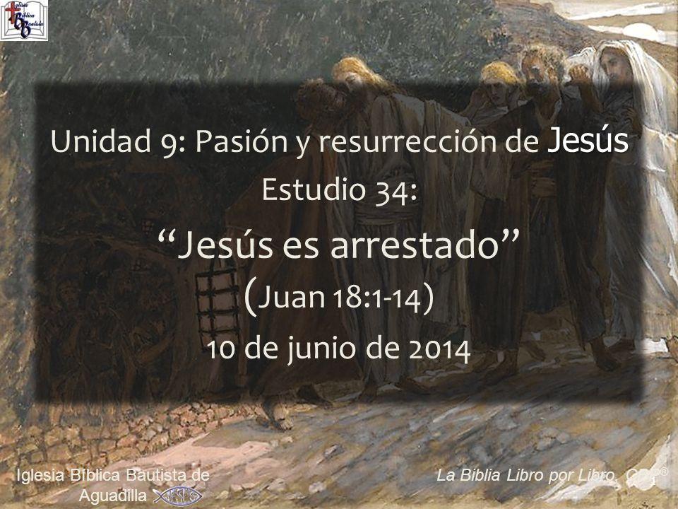 Jesús es arrestado (Juan 18:1-14)